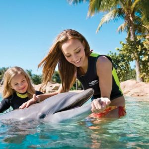 People___Entertainment_and_recreation_Playing_with_the_Dolphin_041510_29